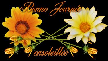 BON LUNDI ET BONNE SEMAINE 1-b-a-bonne-journ...oleill-e-37274aa