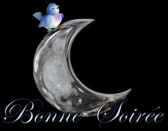 BONNE SOIRÉE DU DIMANCHE 21 DECEMBRE 0-a0-36f78a5