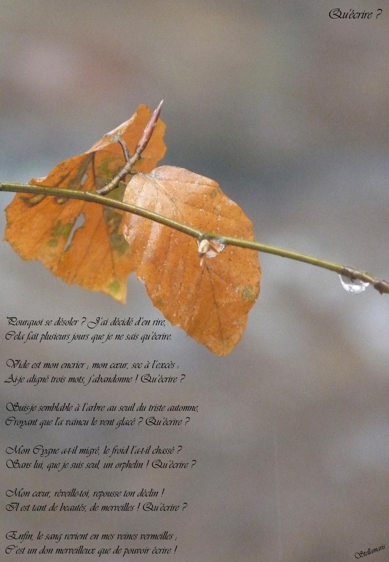 Qu'écrire ? / / Pourquoi se désoler ? J'ai décidé d'en rire, / Cela fait plusieurs jours que je ne sais qu'écrire. / / Vide est mon encrier ; mon cœur, sec à l'excès :/ Ai-je aligné trois mots, j'abandonne ! Qu'écrire ? / / Suis-je semblable à l'arbre au seuil du triste automne, / Croyant que l'a vaincu le vent glacé ? Qu'écrire ? / / Mon Cygne a-t-il migré, le froid l'a-t-il chassé ? / Sans lui, que je suis seul, un orphelin ! Qu'écrire ? / / Mon cœur, réveille-toi, repousse ton déclin ! / Il est tant de beautés, de merveilles ! Qu'écrire ? / / Enfin, le sang revient en mes veines vermeilles ; / C'est un don merveilleux que de pouvoir écrire ! / / Stellamaris