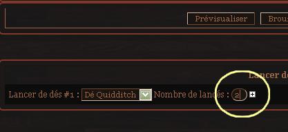 Comment fonctionne un match de Quidditch ? Quidditch-36c54f6